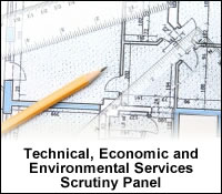 Link to the Technical, Economic and Environmental Services Scrutiny Panel Webpage